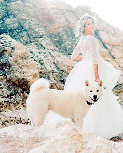 Необычная свадьба на природе